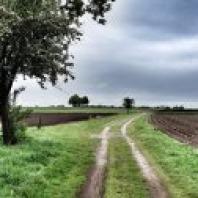 Oude landwegen langs de akkers
