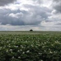 Project duurzame Mageler Es