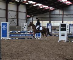 KNHS Indoor springen paarden