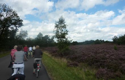 Op de fiets naar de heide