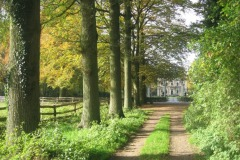 Wandelarrangement Havezate Den Alerdinck