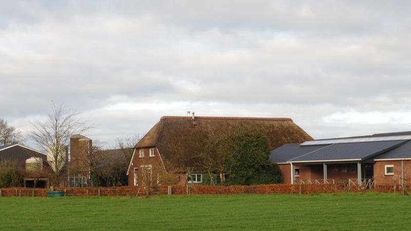 Achtermaate - Beleef de boerderij