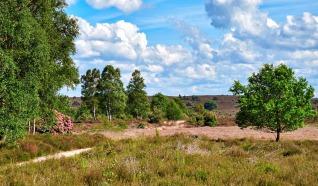 Woeste Route Sprengenberg