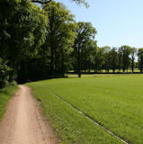 Knooppuntenfietsroute Hulsbeek – De Lutte 55 km.