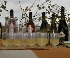 Wijnproefvaartocht