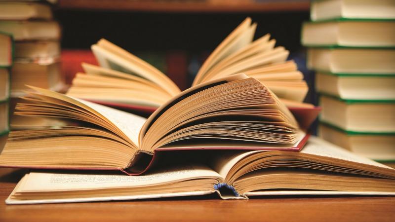 Weerselose Markt, Thema: Boekenmarkt
