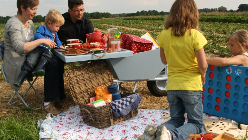 Aardbeienboerderij RozemArrie