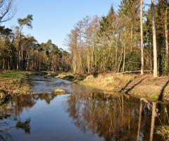 Excursie: Waterpark het Lankheet