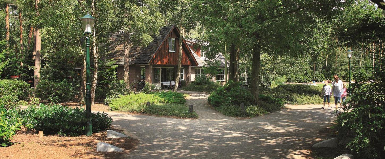 Slapen in de magische bossen van Twente