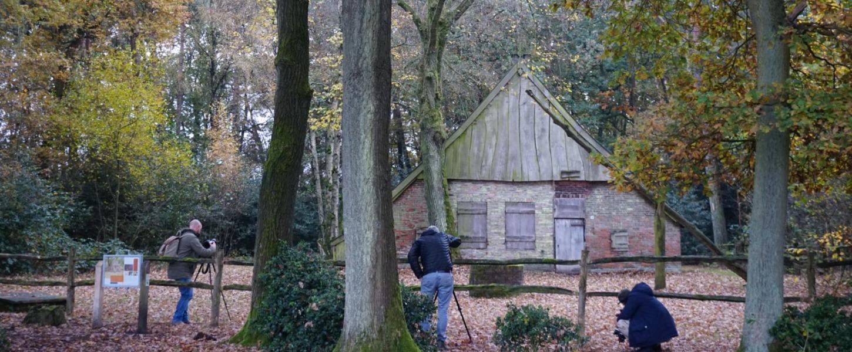 Natuur in Twente