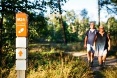 Wandelroute Holterberg  (beste wandelroute 2012)