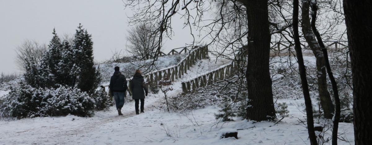 Winterwandelrondjes en bijzondere wandelroutes in het Vechtdal