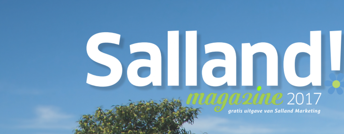 Salland Magazine 2017