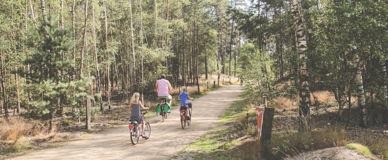 Radfahren in Twente