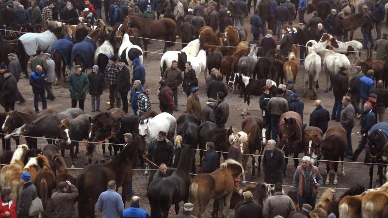 Paardenmarkt Goor