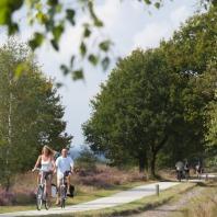 NIEUW:  fietsvakantie Rondje Regge en Heuvelrug