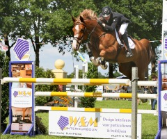Paardenconcours