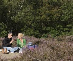 Picknicken met de boswachter